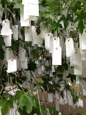 Wishes hung on a tree